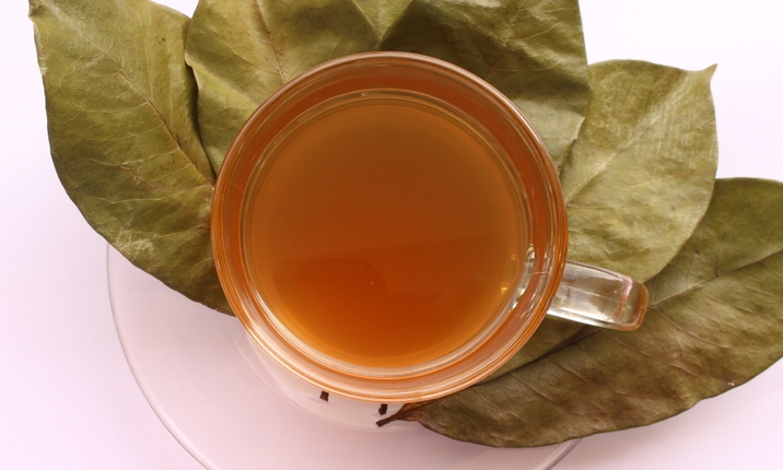 Soursop leaf drinks and cancer myth